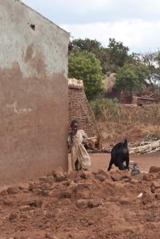 Malawi, 2006